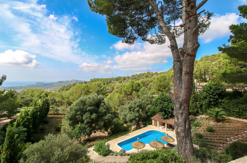A haven of peace - charming finca with lovely Ibiza style elements